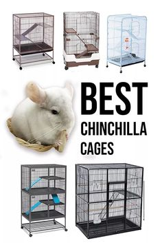 This is a guide on best chinchilla cages. This includes our list of favorite cages, descriptions of each, and the pros and cons of each cage. Guinea Pig Toys, Guinea Pig Care, Guinea Pigs, Cage Chinchilla, Baby Animals, Cute Animals, Small Animals, Little Live Pets, Pet Cage