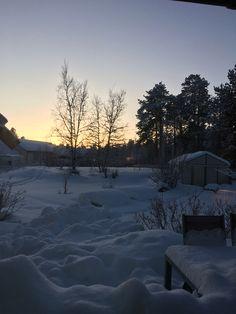 Øvre Alta , Finnmark ,kl 12.30 13. Januar 2016 sola nærmer seg . Lysere dager .
