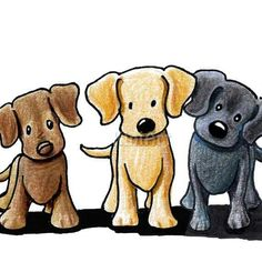 Matted Original Art Labrador Retriever Dogs ACEO Ebsq by KiniArt Verfilzte Original Art Labrador Retriever Hunde ACEO Ebsq von KiniArt Cartoon Drawings, Animal Drawings, Cute Drawings, Perro Labrador Retriever, Caricature Artist, Dog Paintings, Labradors, Cute Illustration, Dog Art