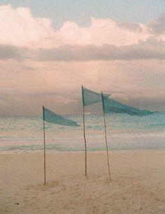 Оcean