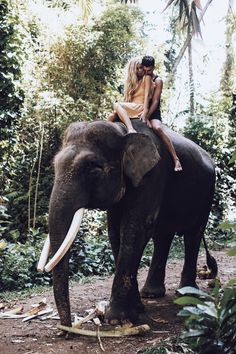 Bali-Jessamaddocks.com, JessaKae, Travel, Cute, Yellow Dress, Lulus, Explore, Good Vibes, Elephants, Style, Fashion, Blonde, Hair, Beauty, Makeup, Bali, Couple, Goals