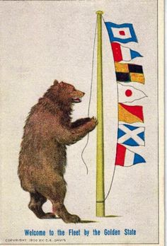bear the flag