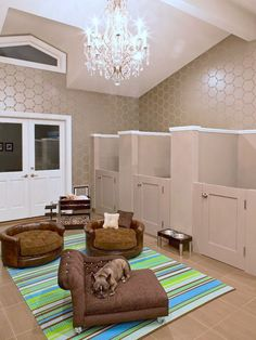 It's a dog room! Looks like i'm going to have that in my future house