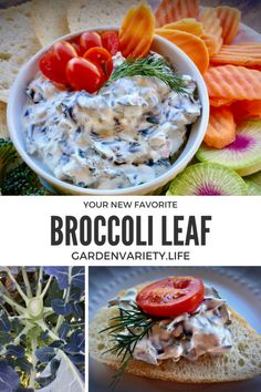 Before you toss your broccoli leaves in the compost, harvest, chop, and freeze for a year full of healthy greens at your fingertips! Recipe For Fresh Broccoli, Frozen Broccoli, Great Recipes, Favorite Recipes, Healthy Recipes, Veggie Dishes, Side Dishes, Broccoli Leaves, Fruits And Veggies