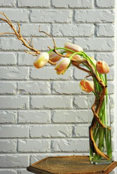 wonderful twisted Curly Willow with graceful Tulips in a tall cylinder vase.......FYI...tulips can be easily manipulated by carefully yet firmly rubbing their stems in the direction and shape of curve that you want. Also, tulips continue to grow in water, keeping the water cold helps slow that process