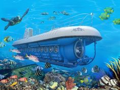 De Palm Tours: Atlantis Submarine