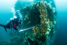 Mesmerizing Underwater Photos of WWII Shipwrecks That Sunk in Canada | Atlas Obscura