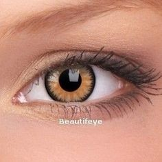 ColourVUE Honey Glamour Contact Lenses (90 Day)