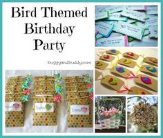 Bird themed birthday party w/ homemade/kid-made favors & a candy-free piñata! Let your child take an active role in the planning and preparation...