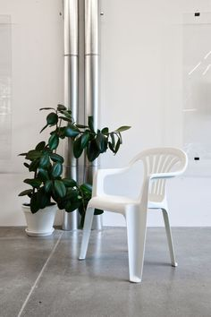 we love the combo of the monobloc chair, galvanised iron, terazzo floor and rubber plant. Shot by Géraldine Recker Photography. Rubber Plant, Iron, Flooring, Fresh, The Originals, Coffee, Photography, Furniture, Home Decor