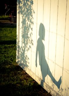 shadow play, quiet times in the backyard