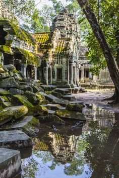 Photographic Print: Reflections at Ta Prohm Temple (Rajavihara) by Michael Nolan : Ta Prohm, Cyclades Greece, Places To Travel, Places To See, Temple Ruins, Ancient Ruins, Mayan Ruins, Ancient Greek, Fantasy Places