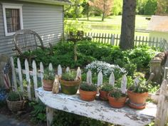 great little garden...love the bench with potted herbs