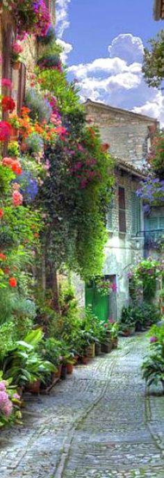 Streets of Cinque Terre, Italy