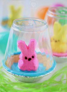 An edible Pet Peep for Easter. Pet Peeps are housed in a graham cracker bowl habitat and enclosed with a clear surrounding. Easter Projects, Easter Crafts, Crafts For Kids, Projects To Try, Diy Crafts, Easter Ideas, Food Crafts, School Projects, Cotton Candy Fudge