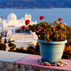 Milos Island/Plaka - Cyclades/Greece Photo by Michael Kyritsis Visit Greece, Greek Islands, Greece Travel, Vacations, Planter Pots, Castle, Holidays, Greece, Greek Isles