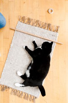 A cat that likes to DIY - behind the scenes with Paper & Stitch.