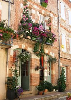 Auvillar, Midi-Pyrenees, France - planted the first of my window boxes today - let's hope it looks something like this, except it won't because that's not what I planted