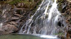 Video rilassanti - dvd EXPERIENCE NATURE - Suoni e immagini della Natura...