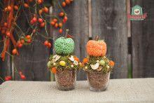 Textil alma és tök asztaldíszpár Plants, Plant, Planets