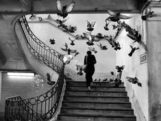 Henri-Cartier Bresson street photo of a woman walking upstairs, a flock of pigeons flying up around her. Famous photographers and their work. Photography 27 Most Famous Photographers You Need To Know Magnum Photos, Most Famous Photographers, French Photographers, Fotos De Henri Cartier Bresson, Fotografia Pb, Cafe Coton, Couple Fotos, Fotojournalismus, Walker Evans