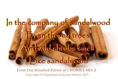 """In the company of sandalwood 