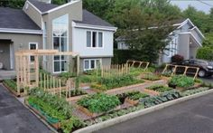 This is a beautiful front yard garden, interesting article on cities battling gardens