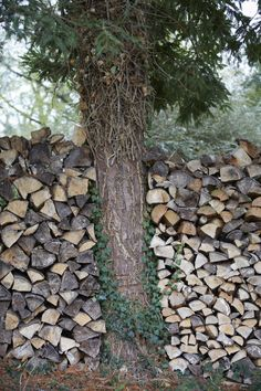 The Well-Kept Woodpile: 10 Tips to Stack and Care for Firewood Outdoors - Gardenista Stacking Firewood, Firewood Storage, Diy Planters Outdoor, Outdoor Gardens, Hanging Plant Wall, Fiddle Leaf Fig Tree, Mosaic Garden, Public Garden, Garden Styles