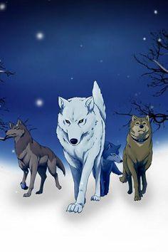 Wolves rain