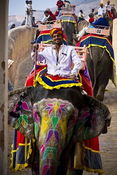 Amber Fort: Elephant Driver, Amer, India  by banzainetsurfer, via Flickr