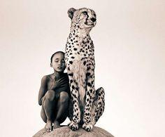 animal photography gregory colbert6