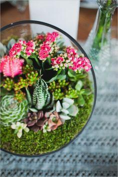 Living succulent garden centerpiece. #weddingchicks Captured By: Chaz Cruz Photography http://www.weddingchicks.com/2014/06/18/rainbow-wedding-with-a-super-cute-program-idea/