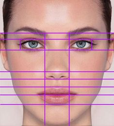 Image result for face proportions drawing