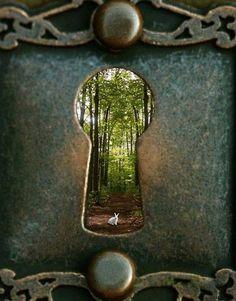Aℓเςƹ เภ ฬᎧภ∂ƹгℓคภ∂ #alice#wonderland#fairytale