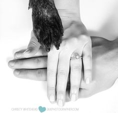 Engagement session by Christy Whitehead Photography based out of Jacksonville, Florida. Cute Save the dates with their puppy's paw in the photo!