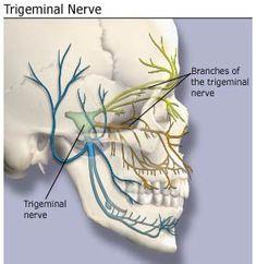 Sjogren's Syndrome and Trigeminal Neuralgia, probably migraines too.