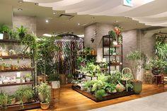 伊勢丹新宿本店のリビングフロアがリニューアルされ、植物や花でもりもりになっていると話題です。 人気ショップの「SOLSO」の出店に加え、東信氏のフラワーショップ「フラワーオブロマンス」が出店。さらに、「GREEN FINGERS」「1012|TERRA」「varench apart 15」なども...