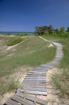 Curious where this leads? Stroll down to Kohler-Andrae State Park's dazzling beach. Located in Sheboygan, Wisconsin.