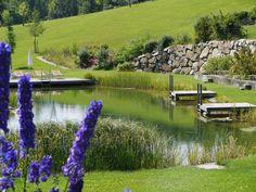 Badeteich Niederösterreich Golf Courses, Wellness, Water Pond, Lawn And Garden