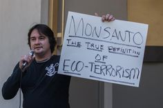 Monsanto, one of the world's leading producers of foods containing genetically modified organisms, or GMOs, recently announced that they were getting away from the GMO game slightly as they have purchased a new technology from the Broad Institute. This new method, CRISPR, which stands for Clustered