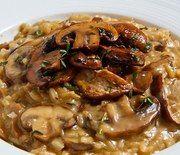 Mushroom garlic cream sauce