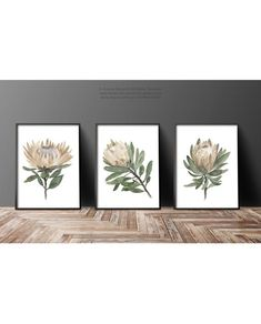 Protea Flower Botanical Art Print, 3 Flowers set Watercolour Painting Green Leaves Brown Taupe Illustration Living Room Decor Flowers Poster - New Ideas Protea Flower, Illustration Blume, Brown Flowers, Abstract Drawings, Floral Illustrations, Botanical Prints, Watercolour Painting, Flower Art, Art Prints