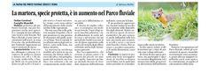 Articolo di Adriana Robba (La Guida 13 giugno 2014)