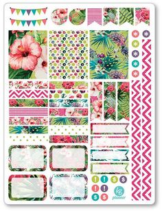 Tropical Decorating Kit / Weekly Spread Planner di PlannerPenny