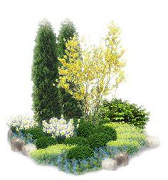 Сад в подарок! - 10 Апреля 2011 - Блог - Травушка