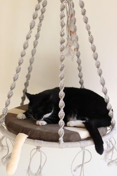 Macrame cat bed Pendant cat bed Pad for cat Cat cushion Diy Cat Hammock, Diy Cat Bed, Hammock Bed, Cat Beds, Macrame Wall Hanging Diy, Bed Pads, Cat Cushion, Cat Room, Macrame Projects