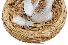 Empty nest divorce: the kids are gone and so is the magic Appreciate You, Dorm Decorations, Grapevine Wreath, Grape Vines, Divorce, Nest, Appreciation, Empty, Kids