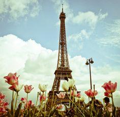 """Eiffel Flower"" by Joanna Lemanska"