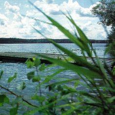 Havelseen, ein fischreiches Gewässersystem.  Die im Naturschutzgebiet #Havelseen gelegenen Gewässer sind für #Angler besonders attraktiv, eine einzigartige Wasserlandschaft  http://www.angelstunde.de/havelseen/