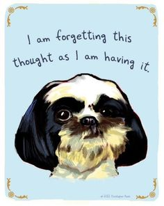 New Shih Tzu 5x7 Print of Original Painting by tinyconfessions